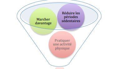 triangle de l'activité J. Gauthier