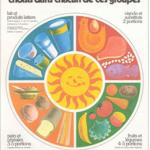 On illustre pour la première fois, les 4 groupes alimentaires autour d'un soleil chaque groupe est égal, occupant le quart du cercle.